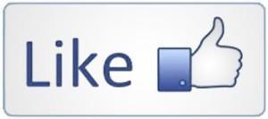 like-facebook-for-blog-promotion