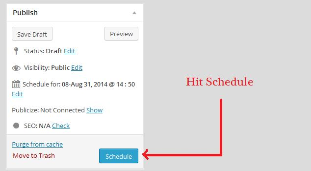 schedule-wordpress-post-hit schedule