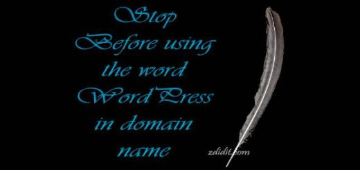 using-word-WordPress-in-domain-name