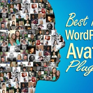wordpress-avatar-plugin-wordpress-plugin