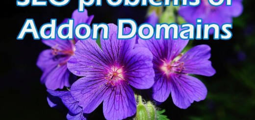 SEO-problems-of-having-multiple-domains